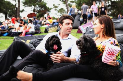 Doggie Night Moonlight Cinema 6